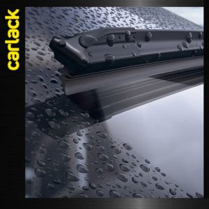 ปัดน้ำฝน